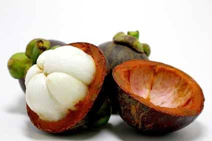 φρούτο garcinia cambogia